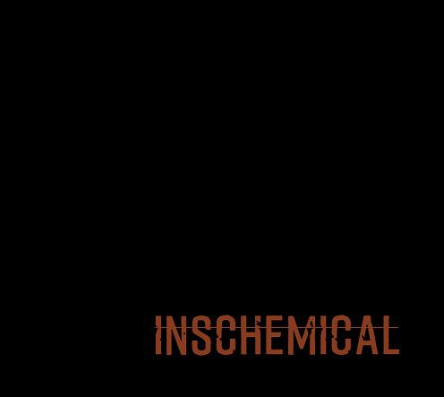 Inschemical cover disco